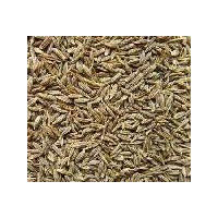 Cumin Seed (natural)