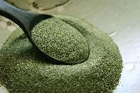 Dried Seaweed Powder