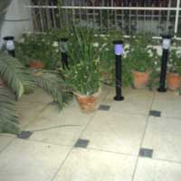 Solar Garden Light (002)