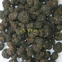 Morinda Citrifolia Fruits / Noni Fruits Dried