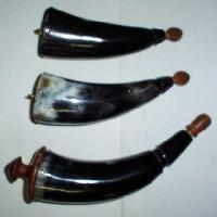 Bottle Horn