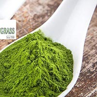 Food Supplement - Manufacturer, Exporters and Wholesale Suppliers,  Maharashtra - Girmes Wheatgrass