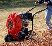 Leaf Cleaning Equipment