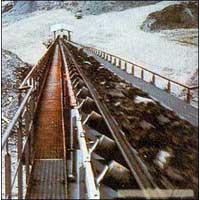 Oil Resistant Conveyor