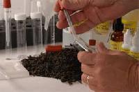 Soil Testing Services