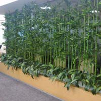 Artificial Bamboo Arrangements