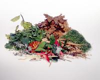 Agro Wastes