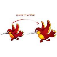 Raster to Vector Conversion Service