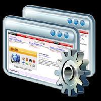 Software Customization Services