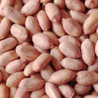 Small Groundnut Kernels