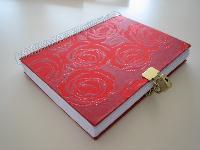New Year Diary