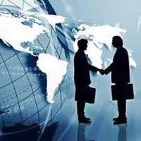 Dgft Consultancy Services