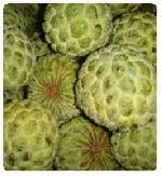 Sitafal ( Custard Apple)