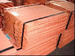 Copper Cathode - Kum Metals