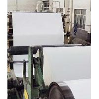 Clay Coated White Back - U & Star Industry Co. Ltd
