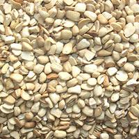 Broken Dehusked Tamarind Seed