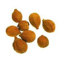 Behada Fruit