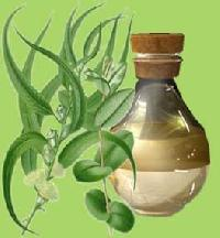 Ruh Kewra Oil