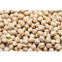 Chickpeas Seed