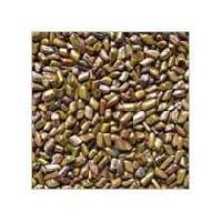 Puwar Seeds