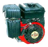 Three Wheeler Engine