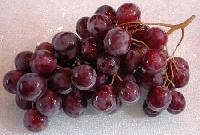 Grapes -02