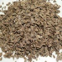 Dil Seeds
