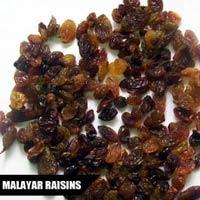 Malayar Raisin