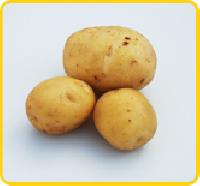 Hermes Potato