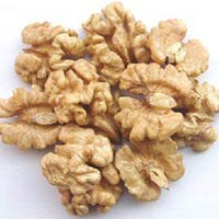 Walnut Kernel Light Half