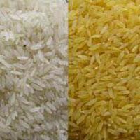 Common Rice