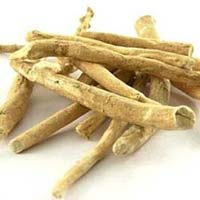 Ashwagandha Dry Extract