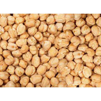 Chickpeas Seeds