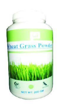 Hawaiian Wheat Grass Powder