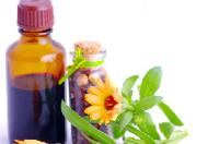 herbal veterinary medicines