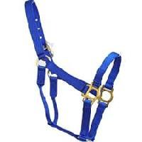 horse nylon halters