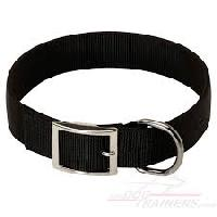 Dog Collar, Dog Accessories