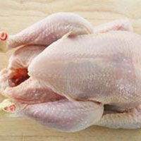 Frozen Halal Whole Chicken - ETS TAH INTERNATIONAL