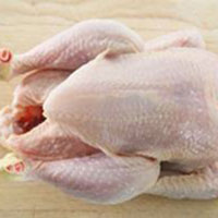 Frozen Whole Chicken - ETS TAH INTERNATIONAL