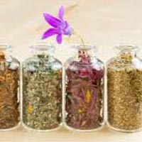 Herbal Medicines Project Consultant
