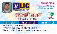 Lic Insurance