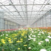 Greenhouse System
