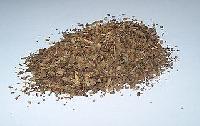 Basil Seeds, Mint Seeds
