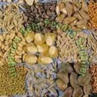 Horticultural Seeds