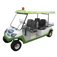 Golf Cart with Luggage Carrier