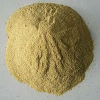 Cattle Yeast Powder