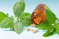 Herbal Anti Diabetic Drugs