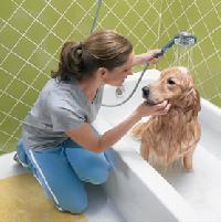 Pet Care Products & Pet Hygiene Products