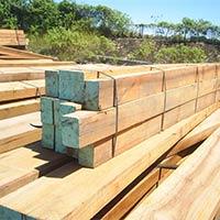 Green Heart -Bridges Timber