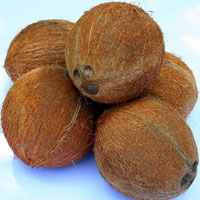 Fresh Mature Coconuts